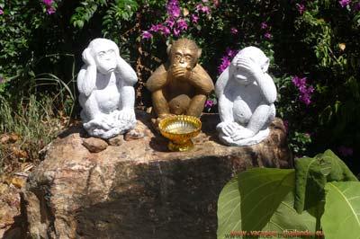 koh samui en thailande les 3 singes de la sagesse pas voir pas parler pas entendre
